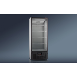 Холодильный шкаф RAPSODY R700LS