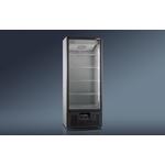 Холодильный шкаф RAPSODY R700VS