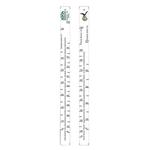 Линейка «Ксента,Кинг,Ля Фея,Ван Гог0.7»; пластик; 700мл; L=28,B=2см; белый,разноцветн.
