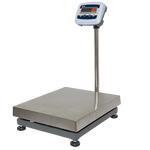 Весы электронные напольные MAS PM1E-100-4050